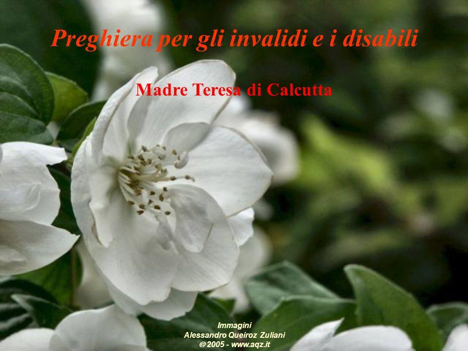 Madre Teresa di Calcutta Immagini Alessandro Queiroz Zuliani 2005 - www.aqz.it Preghiera per gli invalidi e i disabili