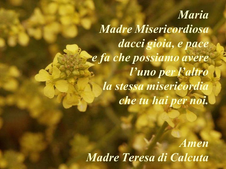 Maria Madre Misericordiosa dacci gioia, e pace e fa che possiamo avere luno per laltro la stessa misericordia che tu hai per noi. Amen Madre Teresa di