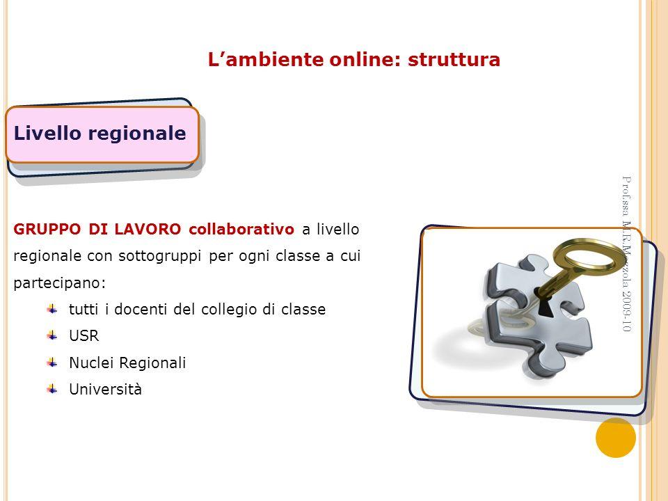 Lambiente online: struttura Livello regionale GRUPPO DI LAVORO collaborativo a livello regionale con sottogruppi per ogni classe a cui partecipano: tu