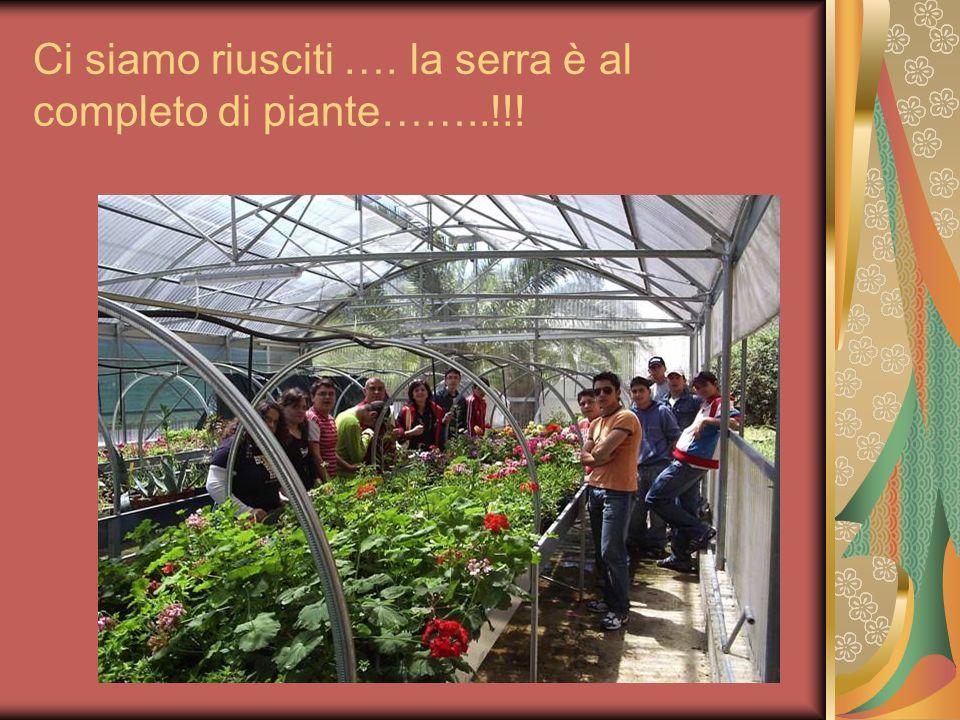 Ci siamo riusciti …. la serra è al completo di piante……..!!!