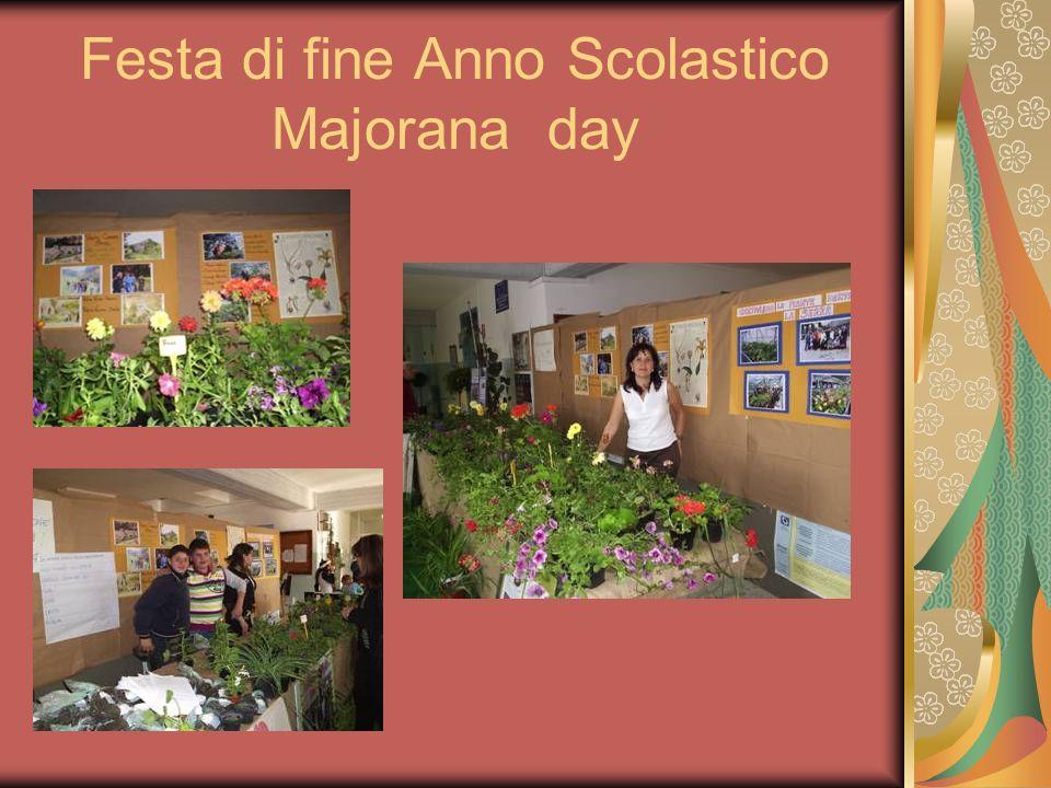 Festa di fine Anno Scolastico Majorana day
