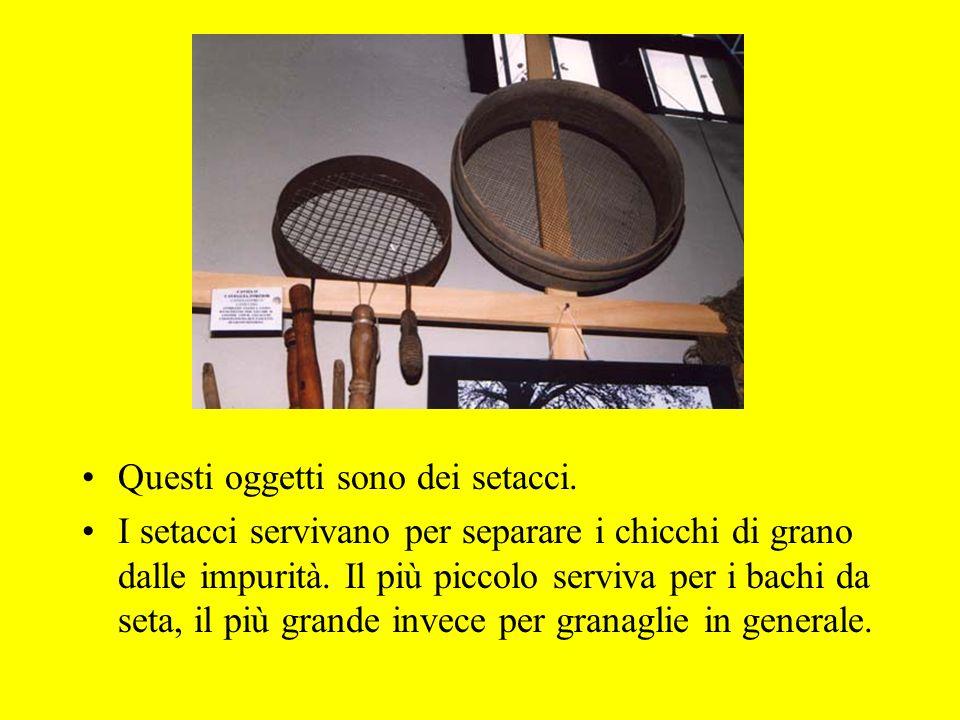 Questi oggetti sono dei setacci. I setacci servivano per separare i chicchi di grano dalle impurità. Il più piccolo serviva per i bachi da seta, il pi
