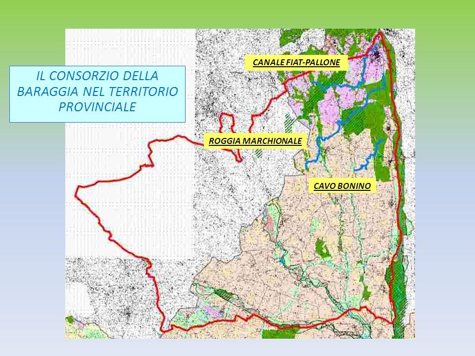 IL CONSORZIO DELLA BARAGGIA NEL TERRITORIO PROVINCIALE ROGGIA MARCHIONALE CAVO BONINO CANALE FIAT-PALLONE