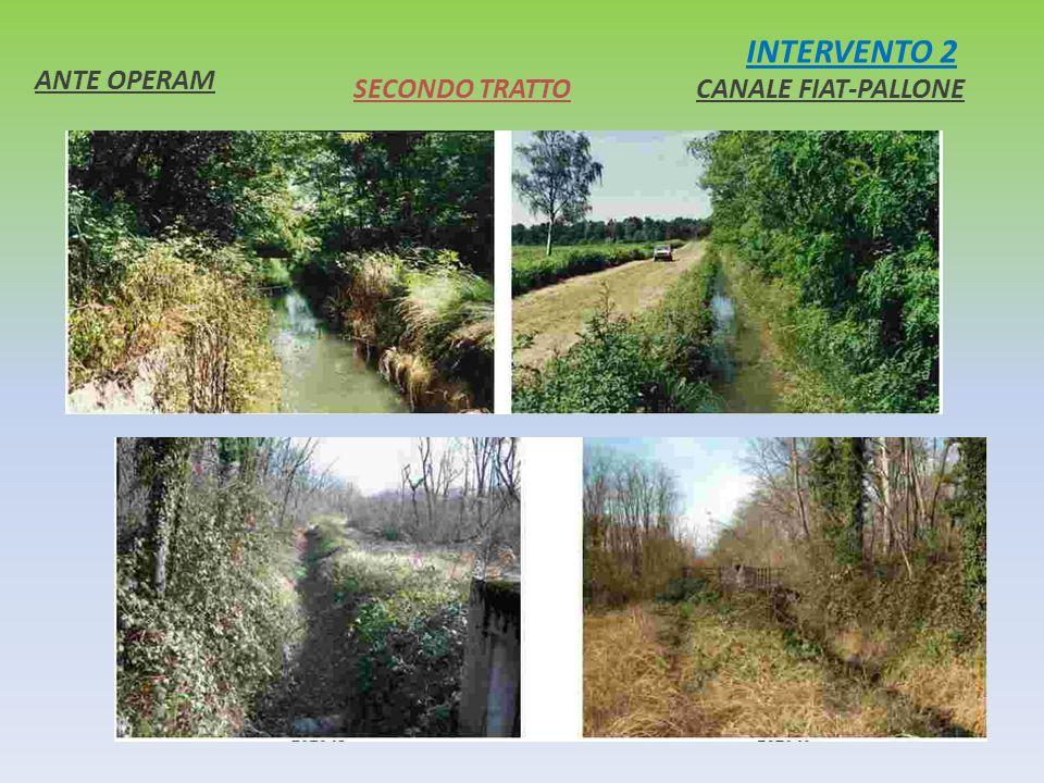 INTERVENTO 2 ANTE OPERAM CANALE FIAT-PALLONESECONDO TRATTO