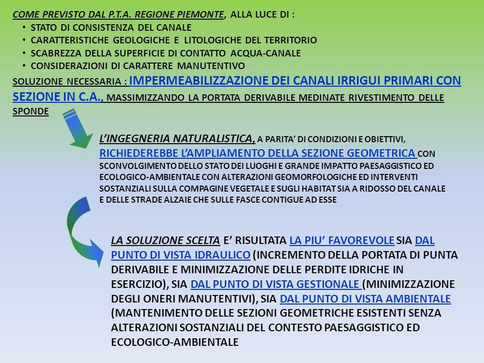 COME PREVISTO DAL P.T.A. REGIONE PIEMONTE, ALLA LUCE DI : STATO DI CONSISTENZA DEL CANALE CARATTERISTICHE GEOLOGICHE E LITOLOGICHE DEL TERRITORIO SCAB