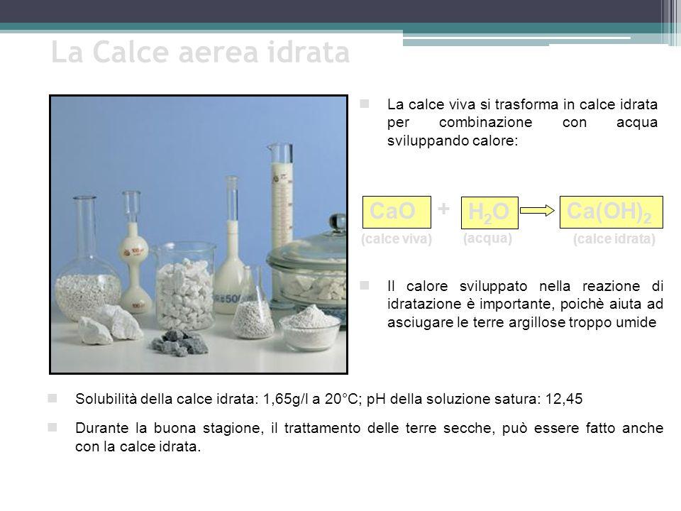 La Calce aerea idrata Solubilità della calce idrata: 1,65g/l a 20°C; pH della soluzione satura: 12,45 Durante la buona stagione, il trattamento delle terre secche, può essere fatto anche con la calce idrata.