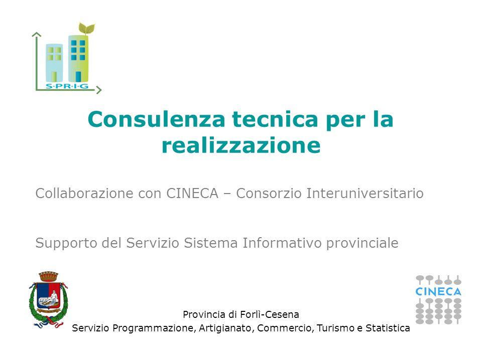 Provincia di Forlì-Cesena Servizio Programmazione, Artigianato, Commercio, Turismo e Statistica Consulenza tecnica per la realizzazione Collaborazione con CINECA – Consorzio Interuniversitario Supporto del Servizio Sistema Informativo provinciale