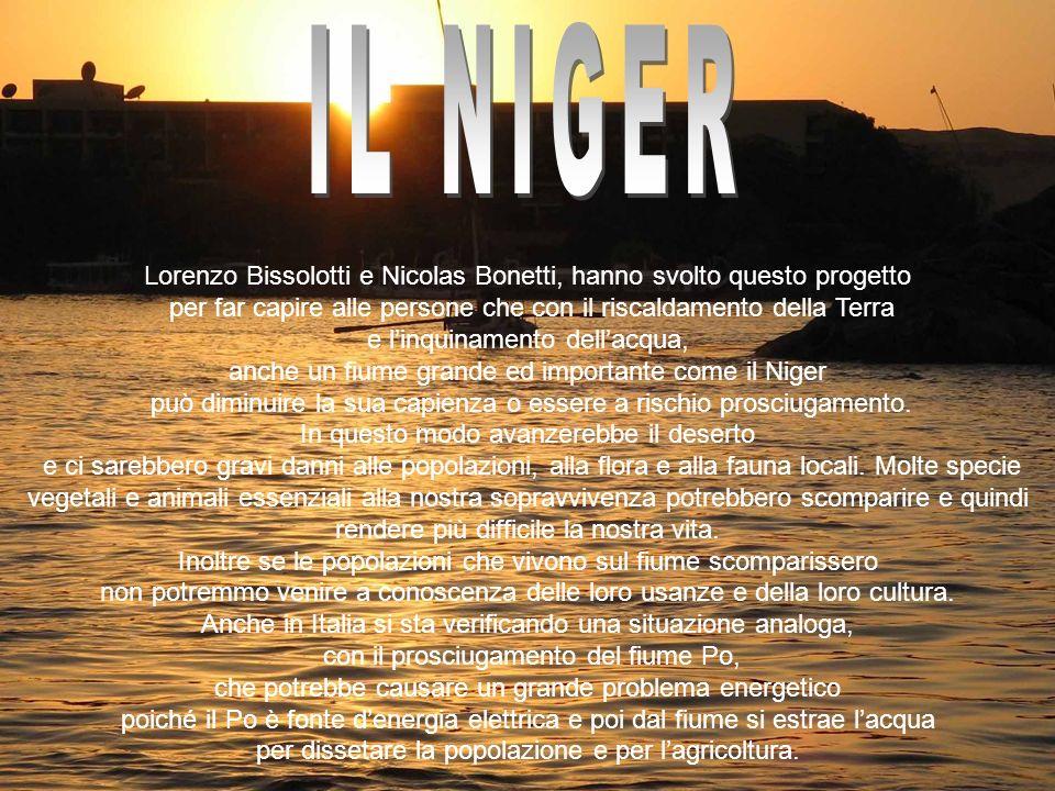 Lorenzo Bissolotti e Nicolas Bonetti, hanno svolto questo progetto per far capire alle persone che con il riscaldamento della Terra e linquinamento de
