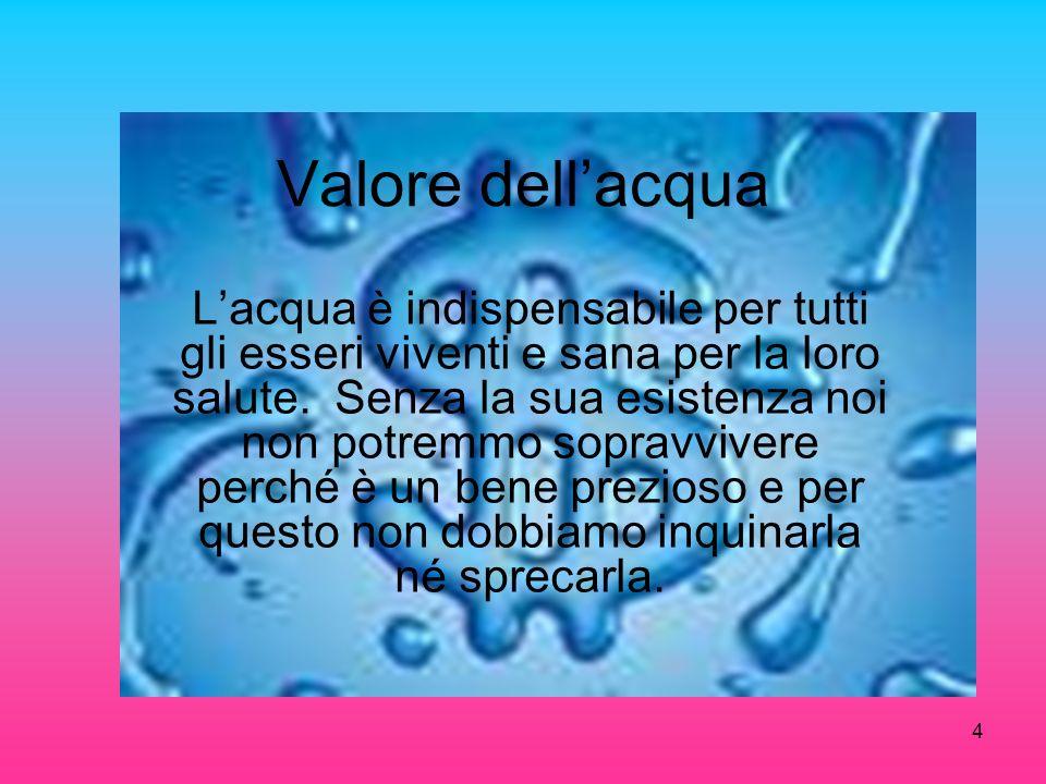 Valore dellacqua Lacqua è indispensabile per tutti gli esseri viventi e sana per la loro salute. Senza la sua esistenza noi non potremmo sopravvivere