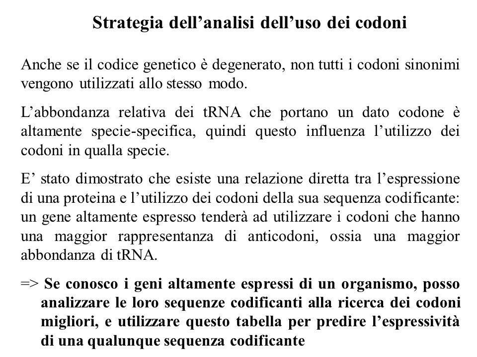 Strategia dellanalisi delluso dei codoni Anche se il codice genetico è degenerato, non tutti i codoni sinonimi vengono utilizzati allo stesso modo. La