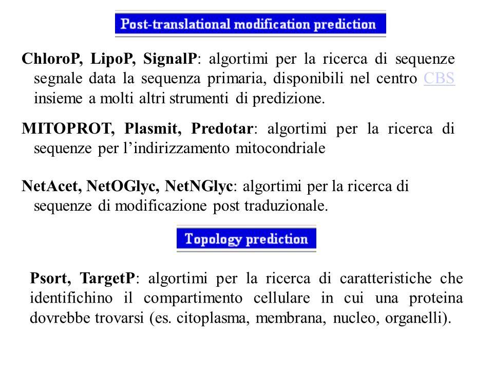 ChloroP, LipoP, SignalP: algortimi per la ricerca di sequenze segnale data la sequenza primaria, disponibili nel centro CBS insieme a molti altri stru