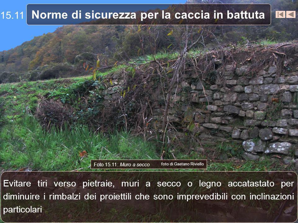 Norme di sicurezza per la caccia in battuta Foto 15.11: Muro a secco foto di Gaetano Riviello Evitare tiri verso pietraie, muri a secco o legno accata