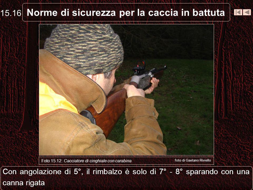 Norme di sicurezza per la caccia in battuta Foto 15.12: Cacciatore di cinghiale con carabina foto di Gaetano Riviello Con angolazione di 5°, il rimbalzo è solo di 7° - 8° sparando con una canna rigata 15.16