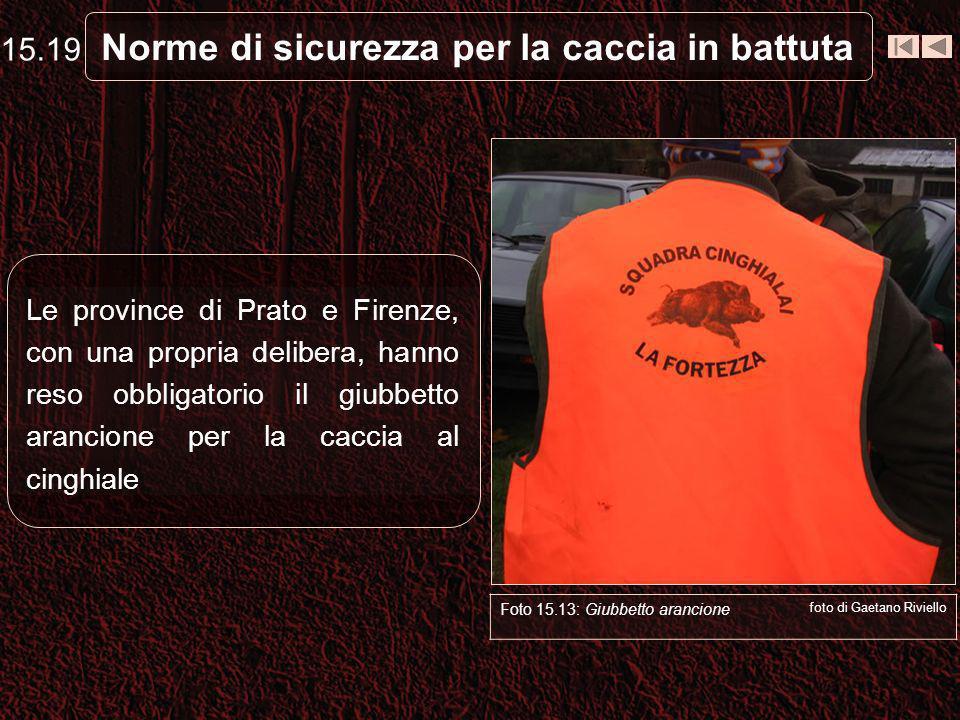 Norme di sicurezza per la caccia in battuta Le province di Prato e Firenze, con una propria delibera, hanno reso obbligatorio il giubbetto arancione p