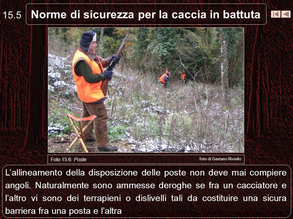 Norme di sicurezza per la caccia in battuta 15.5 Foto 15.6: Poste foto di Gaetano Riviello Lallineamento della disposizione delle poste non deve mai compiere angoli.