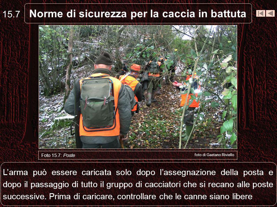 Norme di sicurezza per la caccia in battuta 15.7 Foto 15.7: Poste foto di Gaetano Riviello Larma può essere caricata solo dopo lassegnazione della posta e dopo il passaggio di tutto il gruppo di cacciatori che si recano alle poste successive.