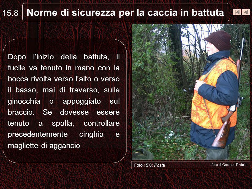 Norme di sicurezza per la caccia in battuta 15.8 Foto 15.8: Posta foto di Gaetano Riviello Dopo linizio della battuta, il fucile va tenuto in mano con