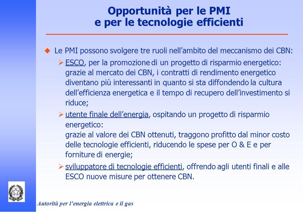 Autorità per lenergia elettrica e il gas Le PMI possono svolgere tre ruoli nellambito del meccanismo dei CBN: ESCO, per la promozione di un progetto d