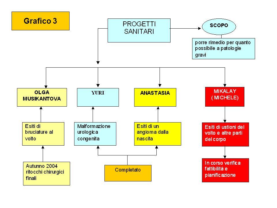 Grafico 3 Grafico 2 Il costo per fare arrivare un bambino è di circa 650 euro Alle famiglie viene richiesto un contributo di circa 370 euro ( 57%) Il resto ( 43%) è a carico dellassociazione.(*) * Compatibilmente con i fondi disponibili