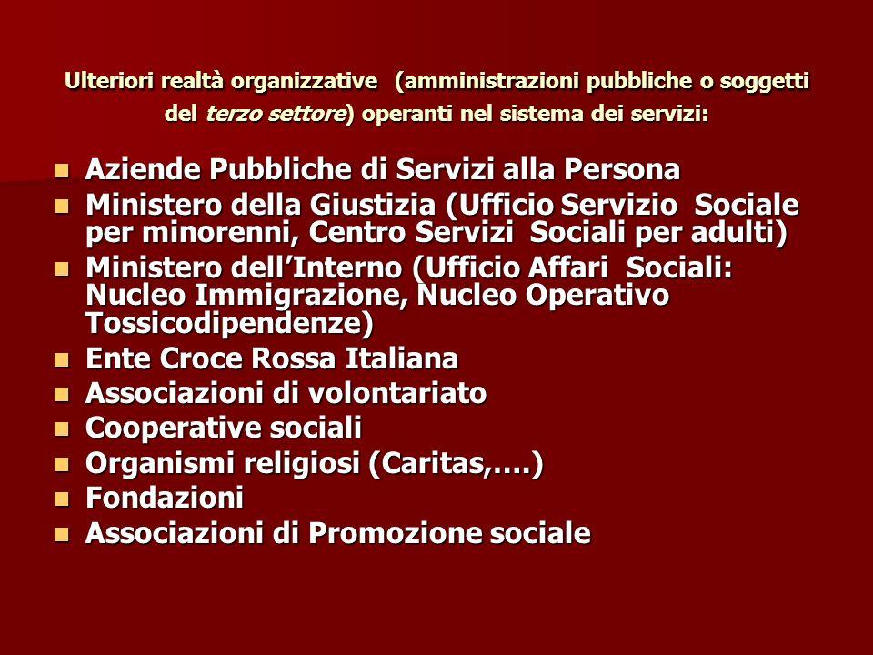 Ulteriori realtà organizzative (amministrazioni pubbliche o soggetti del terzo settore) operanti nel sistema dei servizi: Aziende Pubbliche di Servizi