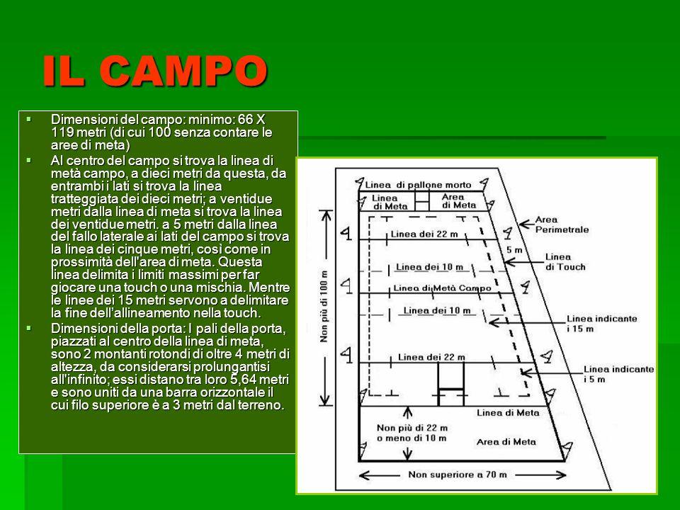 IL CAMPO Dimensioni del campo: minimo: 66 X 119 metri (di cui 100 senza contare le aree di meta) Dimensioni del campo: minimo: 66 X 119 metri (di cui