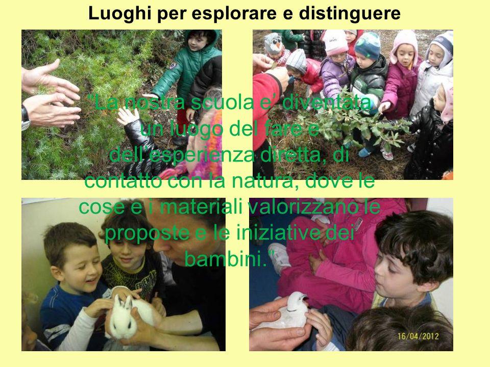 Luoghi per esplorare e distinguere La nostra scuola e diventata un luogo del fare e dellesperienza diretta, di contatto con la natura, dove le cose e