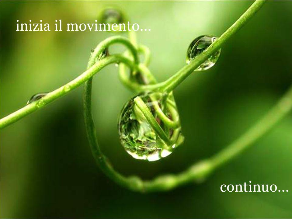 inizia il movimento... continuo...