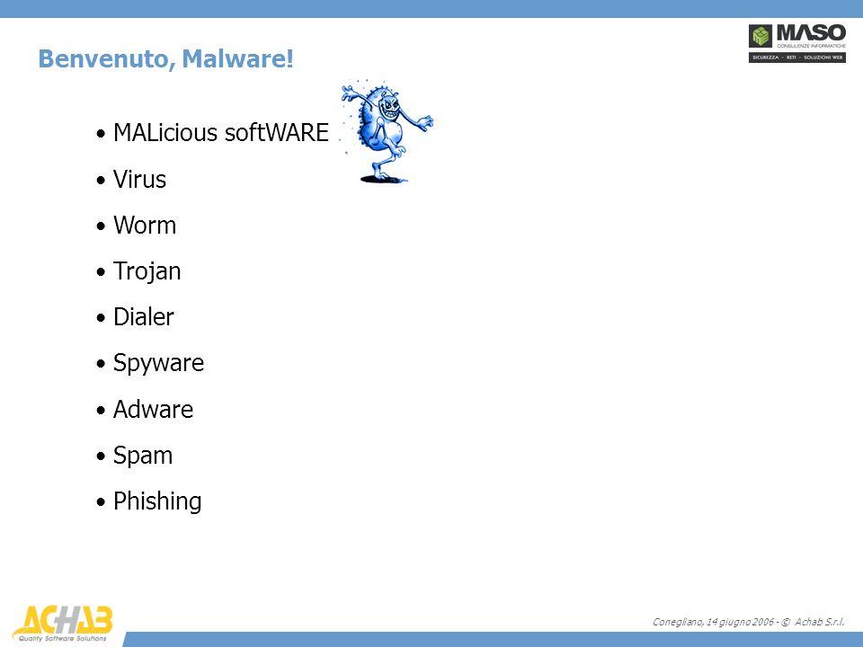 Conegliano, 14 giugno 2006 - © Achab S.r.l. Benvenuto, Malware! MALicious softWARE Virus Worm Trojan Dialer Spyware Adware Spam Phishing