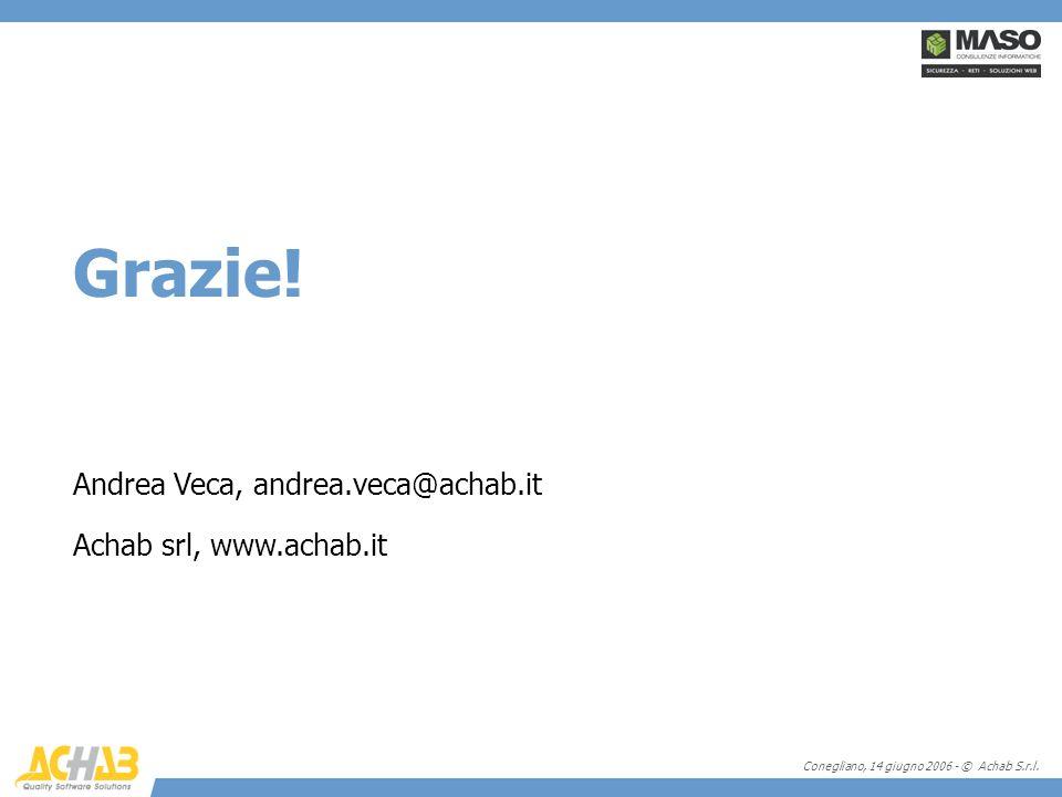 Conegliano, 14 giugno 2006 - © Achab S.r.l. Grazie! Andrea Veca, andrea.veca@achab.it Achab srl, www.achab.it
