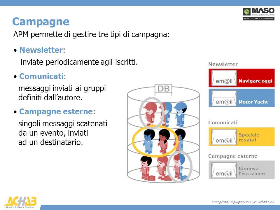 Conegliano, 14 giugno 2006 - © Achab S.r.l. APM permette di gestire tre tipi di campagna: Newsletter: inviate periodicamente agli iscritti. Comunicati