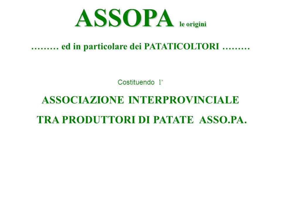 ASSOPA le origini ……… ed in particolare dei PATATICOLTORI ……… Costituendo l ASSOCIAZIONE INTERPROVINCIALE TRA PRODUTTORI DI PATATE ASSO.PA.