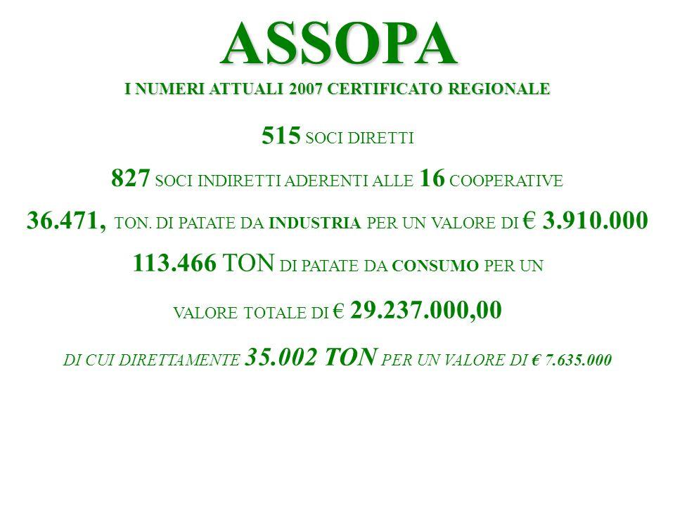 ASSOPA I NUMERI ATTUALI 2007 CERTIFICATO REGIONALE 515 SOCI DIRETTI 827 SOCI INDIRETTI ADERENTI ALLE 16 COOPERATIVE 36.471, TON.