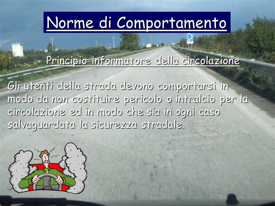 Gli utenti della strada devono comportarsi in modo da non costituire pericolo o intralcio per la circolazione ed in modo che sia in ogni caso salvagua