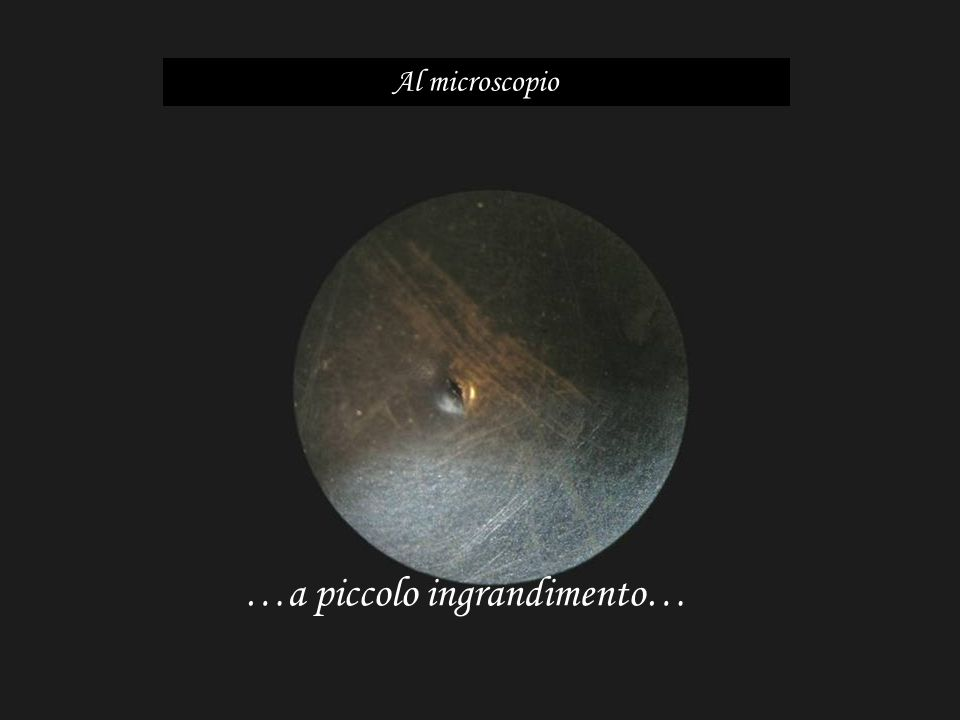 …a piccolo ingrandimento… Al microscopio