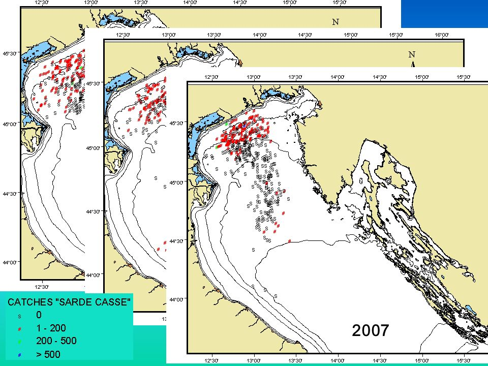 2005 2006 2007