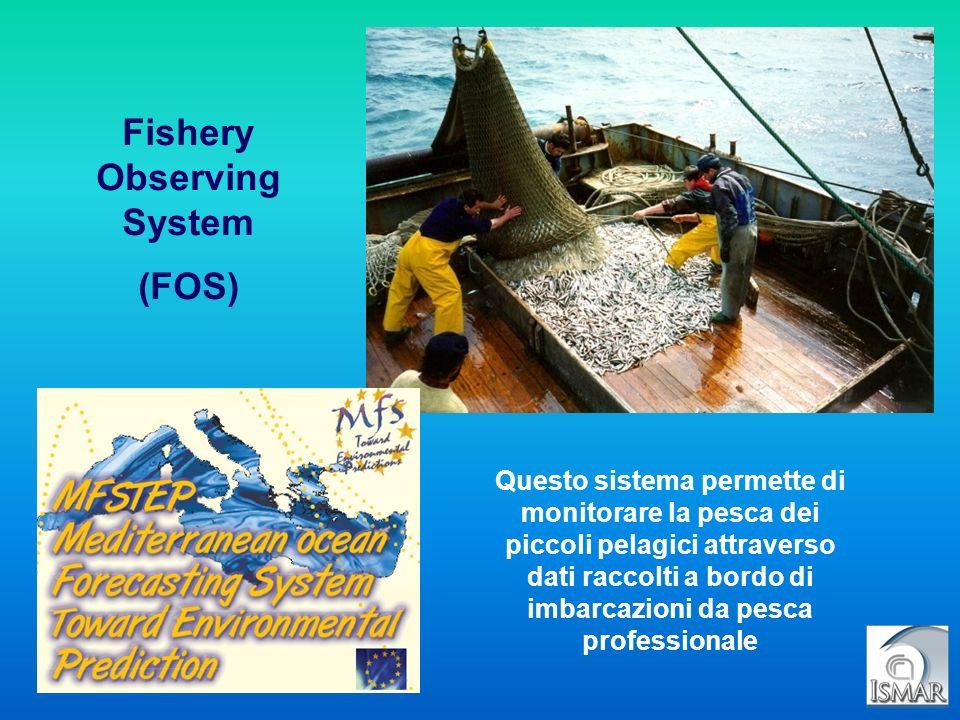 Fishery Observing System (FOS) Questo sistema permette di monitorare la pesca dei piccoli pelagici attraverso dati raccolti a bordo di imbarcazioni da
