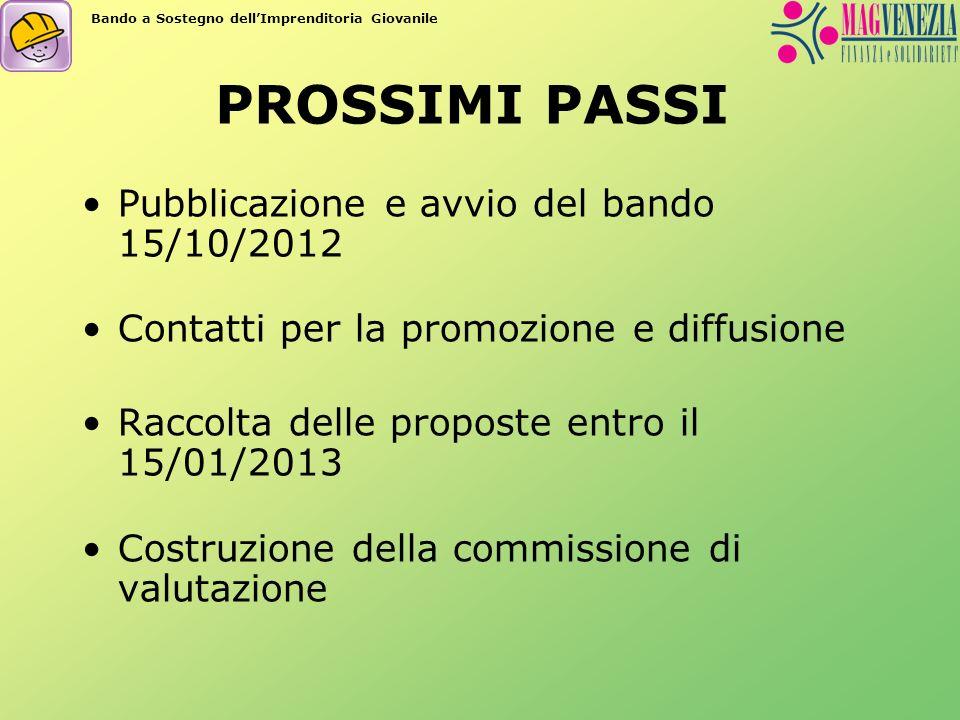 PROSSIMI PASSI Pubblicazione e avvio del bando 15/10/2012 Contatti per la promozione e diffusione Raccolta delle proposte entro il 15/01/2013 Costruzione della commissione di valutazione Bando a Sostegno dellImprenditoria Giovanile