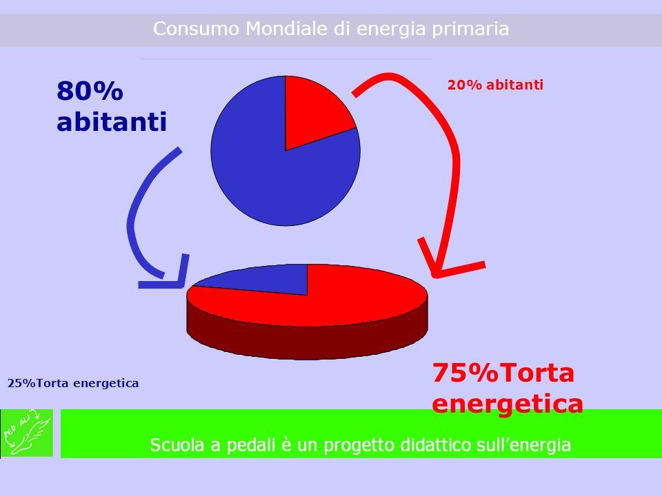 Consumo Mondiale di energia primaria 75%Torta energetica 25%Torta energetica 80% abitanti 20% abitanti