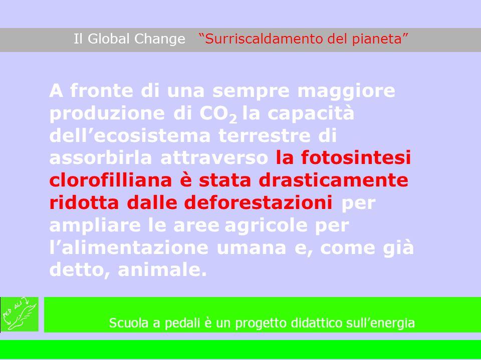 A fronte di una sempre maggiore produzione di CO 2 la capacità dellecosistema terrestre di assorbirla attraverso la fotosintesi clorofilliana è stata
