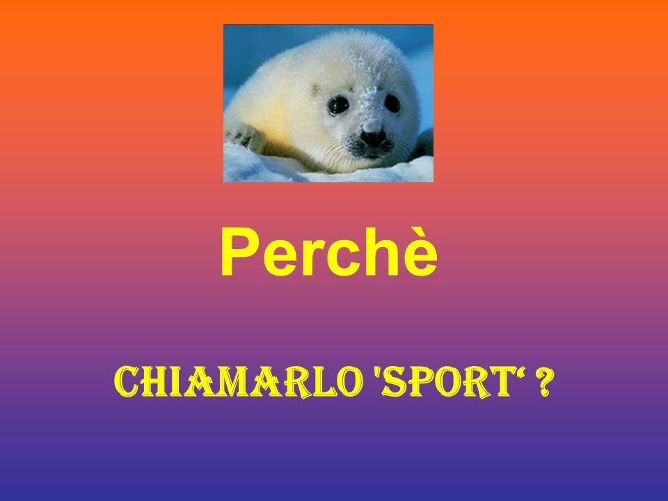 Perchè CHIAMARLO SPORT