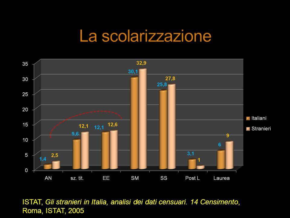 ISTAT, Gli stranieri in Italia, analisi dei dati censuari. 14 Censimento, Roma, ISTAT, 2005