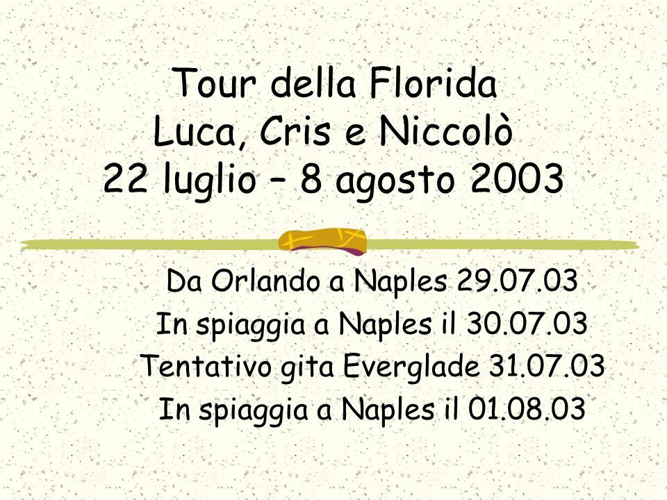 Tour della Florida Luca, Cris e Niccolò 22 luglio – 8 agosto 2003 Da Orlando a Naples 29.07.03 In spiaggia a Naples il 30.07.03 Tentativo gita Everglade 31.07.03 In spiaggia a Naples il 01.08.03