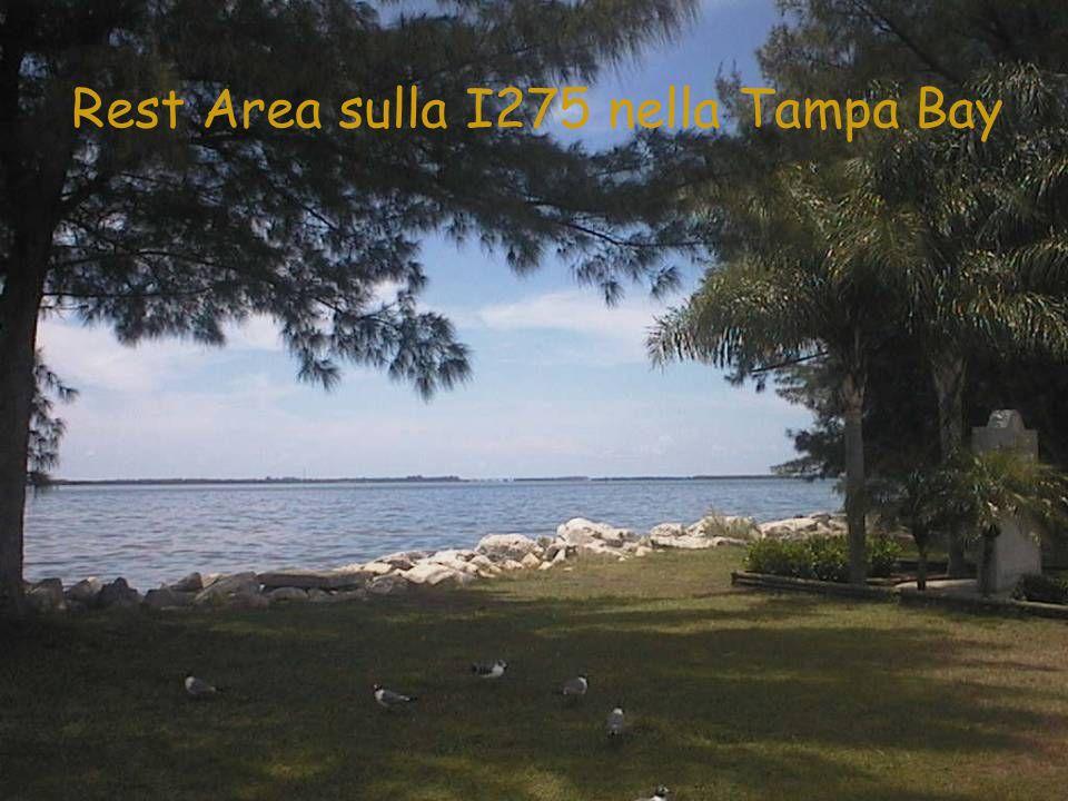 Rest Area sulla I275 nella Tampa Bay