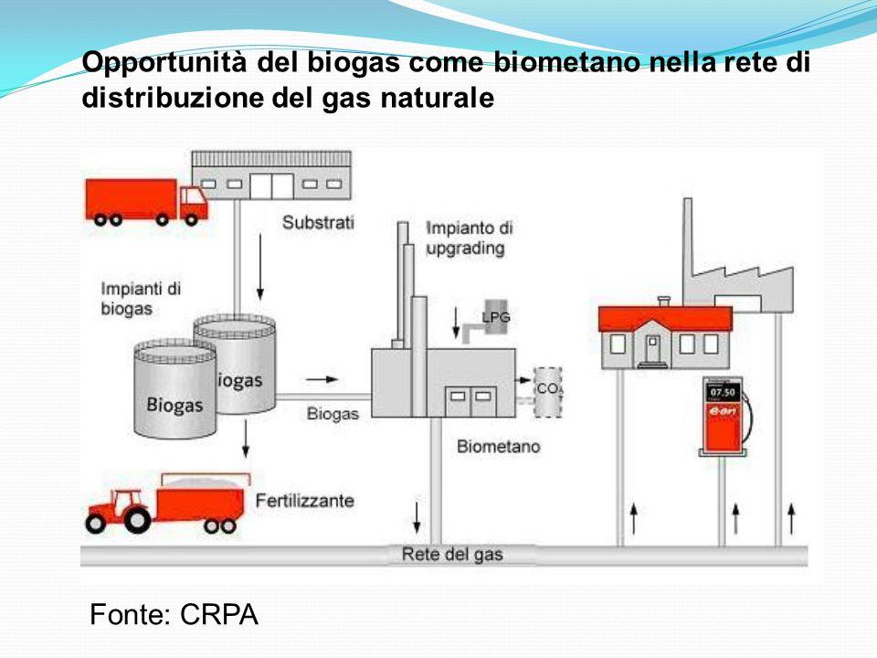 Fonte: CRPA Opportunità del biogas come biometano nella rete di distribuzione del gas naturale