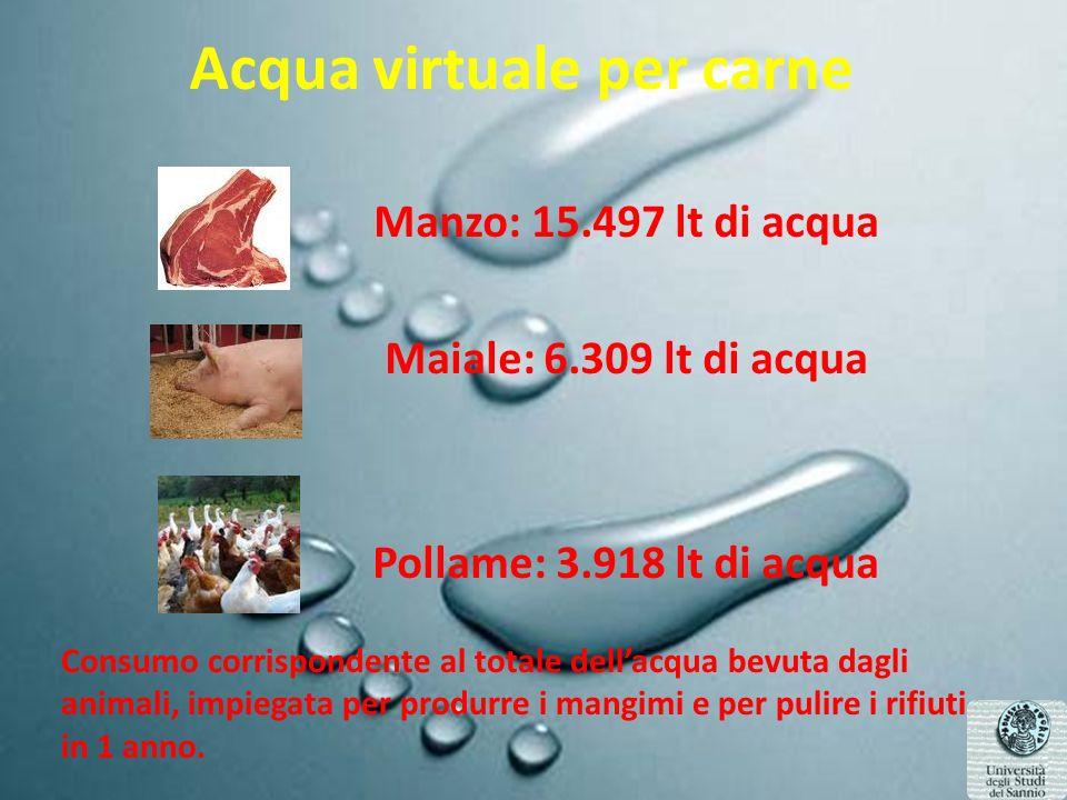 Acqua virtuale per carne Manzo: 15.497 lt di acqua Maiale: 6.309 lt di acqua Pollame: 3.918 lt di acqua Consumo corrispondente al totale dellacqua bevuta dagli animali, impiegata per produrre i mangimi e per pulire i rifiuti in 1 anno.