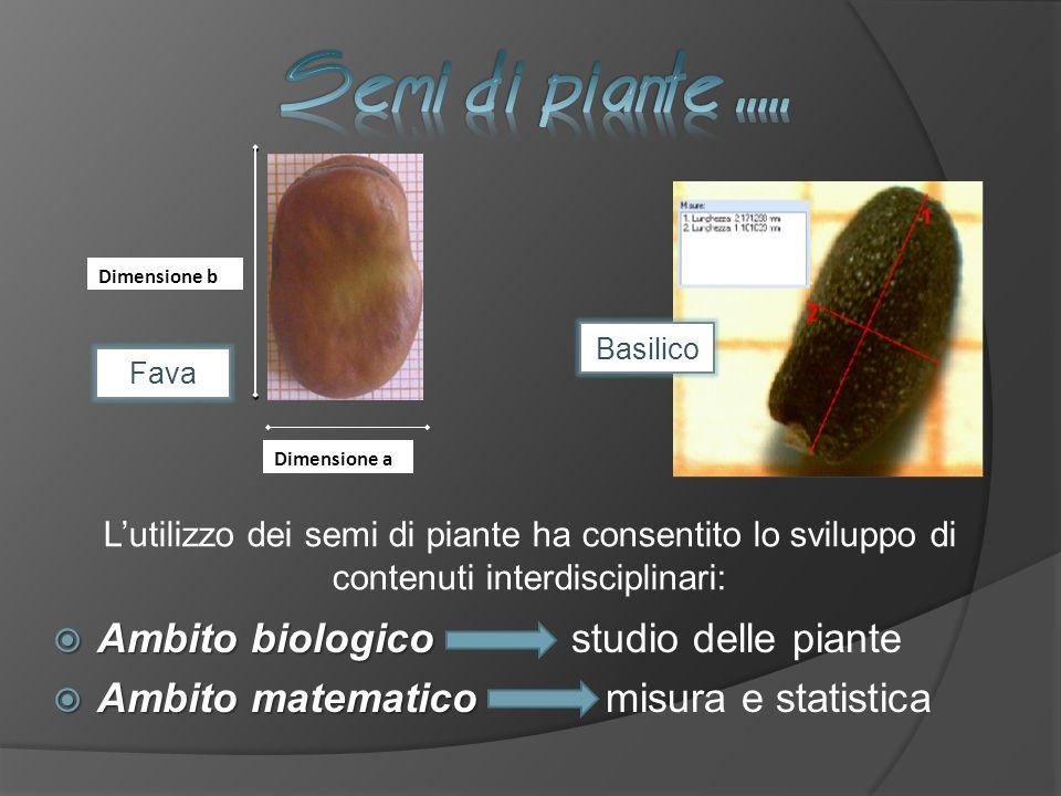 Dimensione b Dimensione a Fava Basilico Ambito biologico Ambito biologico studio delle piante Ambito matematico Ambito matematico misura e statistica Lutilizzo dei semi di piante ha consentito lo sviluppo di contenuti interdisciplinari: