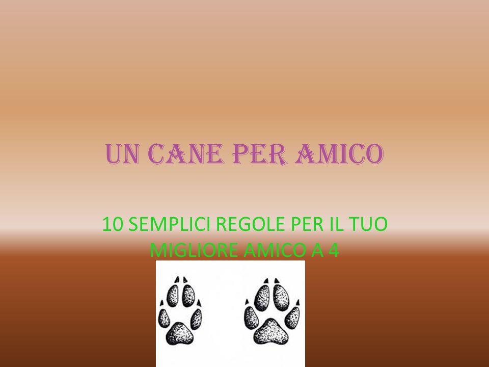 UN CANE PER AMICO 10 SEMPLICI REGOLE PER IL TUO MIGLIORE AMICO A 4