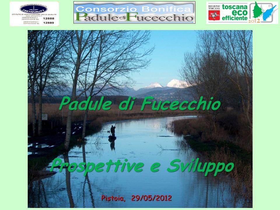 Padule di Fucecchio Pistoia, 29/05/2012 Prospettive e Sviluppo