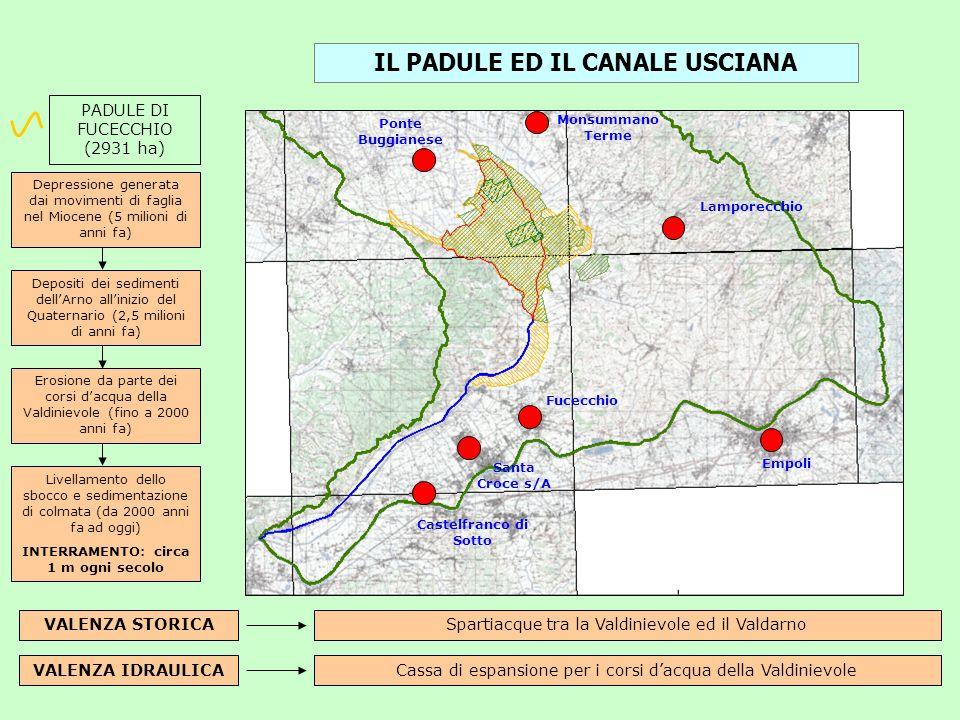 VALENZA STORICA PADULE DI FUCECCHIO (2931 ha) VALENZA IDRAULICA Spartiacque tra la Valdinievole ed il Valdarno Cassa di espansione per i corsi dacqua
