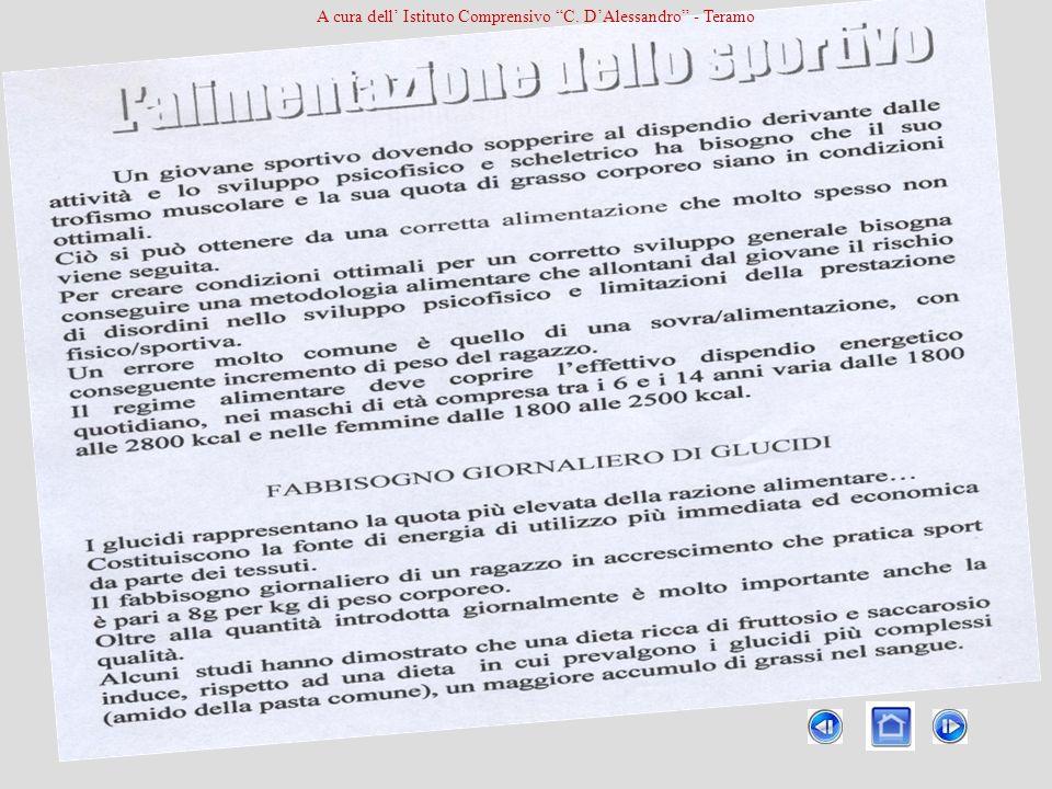 A cura dell Istituto Comprensivo C. DAlessandro - Teramo